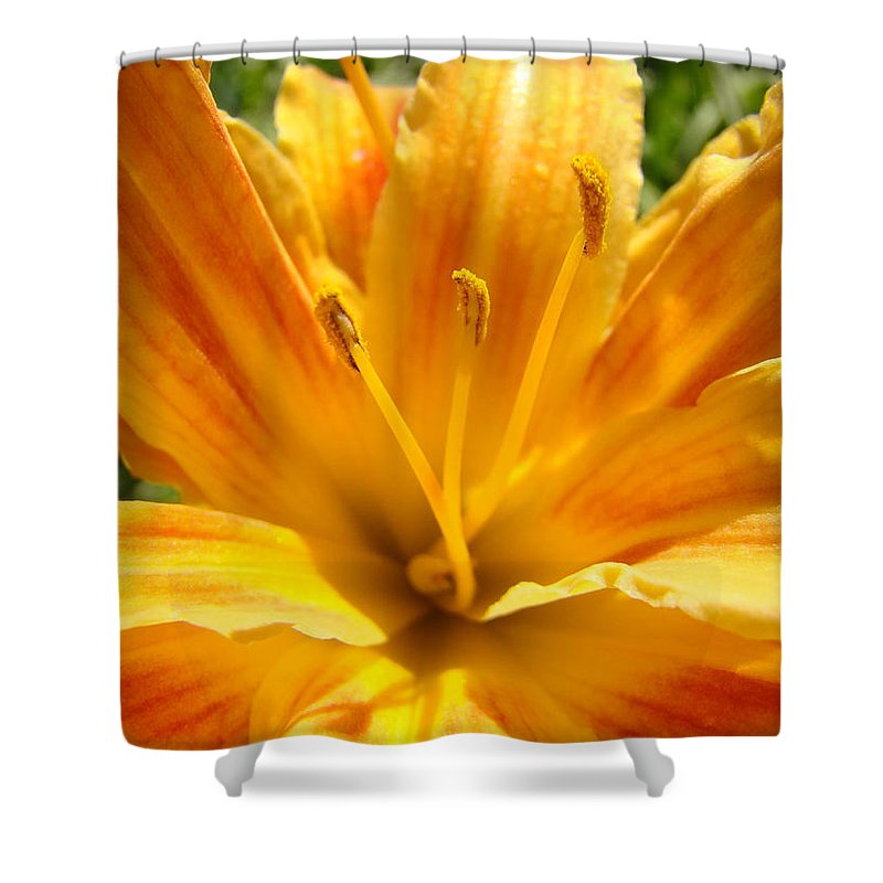 Lilies Shower Curtain featuring the photograph Lilies Orange Yellow Lily Flower 1 Giclee Art Prints Baslee Troutman by Baslee Troutman