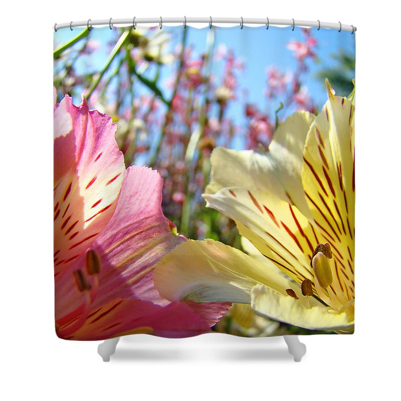 Lilies Shower Curtain featuring the photograph Lilies Pink Yellow Lily Flowers Canvas Art Prints Baslee Troutman by Baslee Troutman