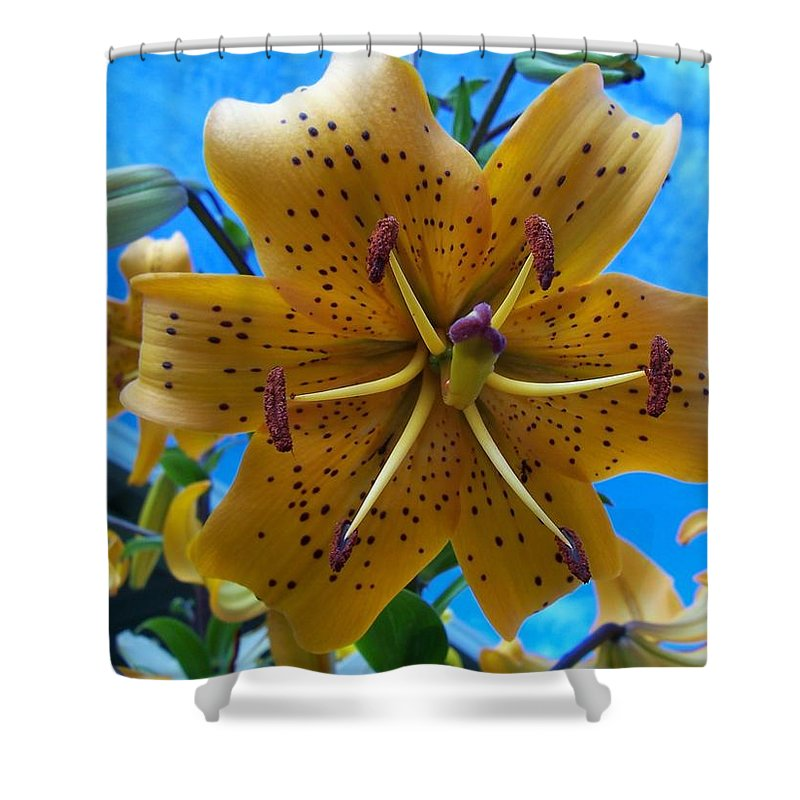 Lily Shower Curtain featuring the photograph Lilium Yellow by Angela Hansen