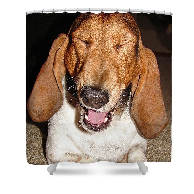 Basset Hound Shower Curtain featuring the photograph Lillard by Heather Coen
