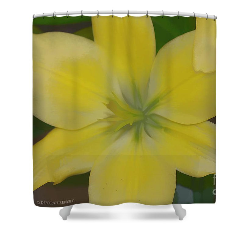Lilly Shower Curtain featuring the photograph Lilly With Artistic Beauty by Deborah Benoit