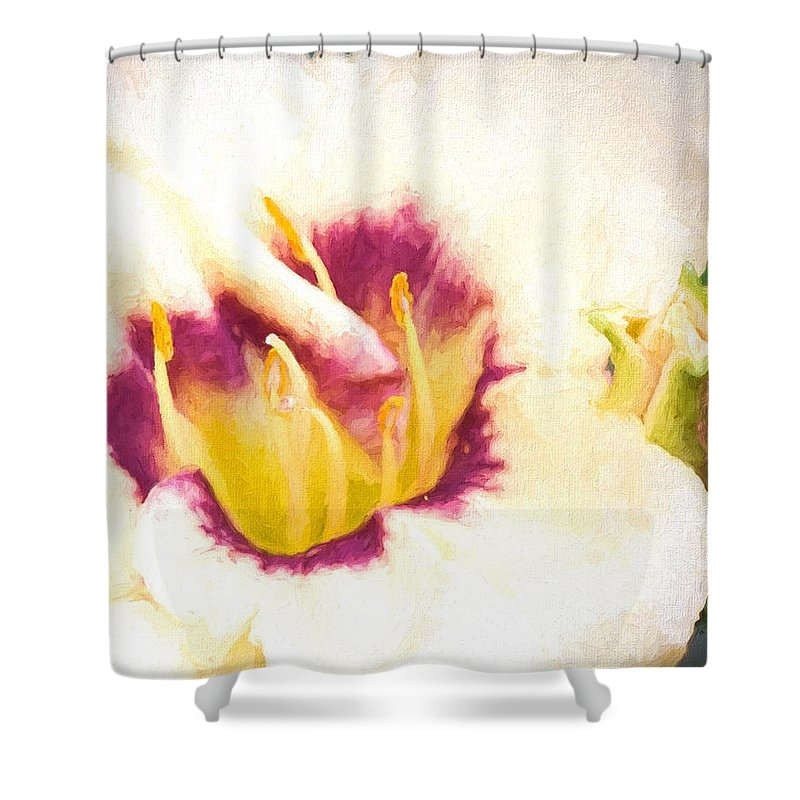 Day Lily Shower Curtain featuring the photograph Lily by Cathy Donohoue