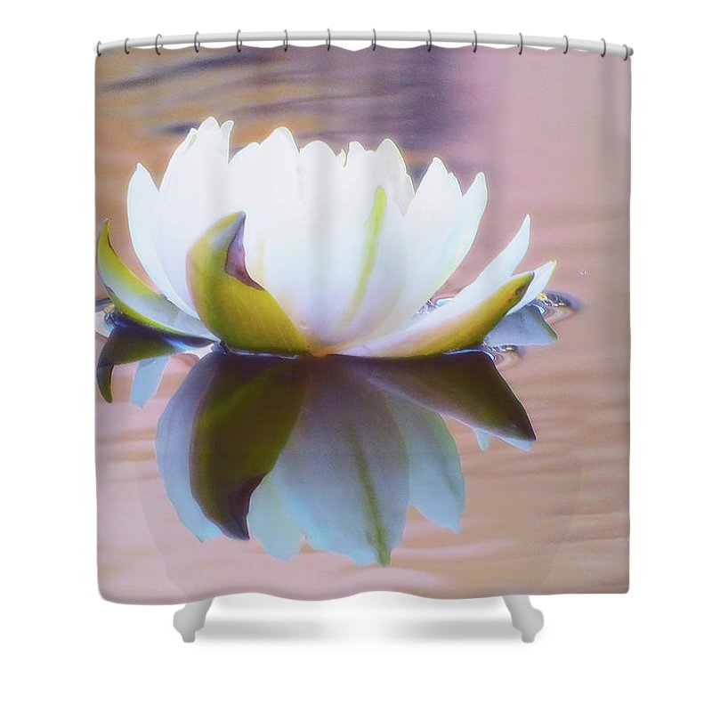 Lily Pads Shower Curtain featuring the photograph Lily Dream by Deborah England