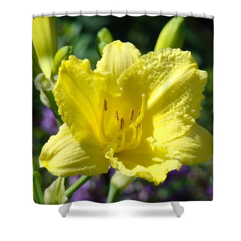 Lilies Shower Curtain featuring the photograph Lily Flower Art Print Canvas Yellow Lilies Baslee Troutman by Baslee Troutman