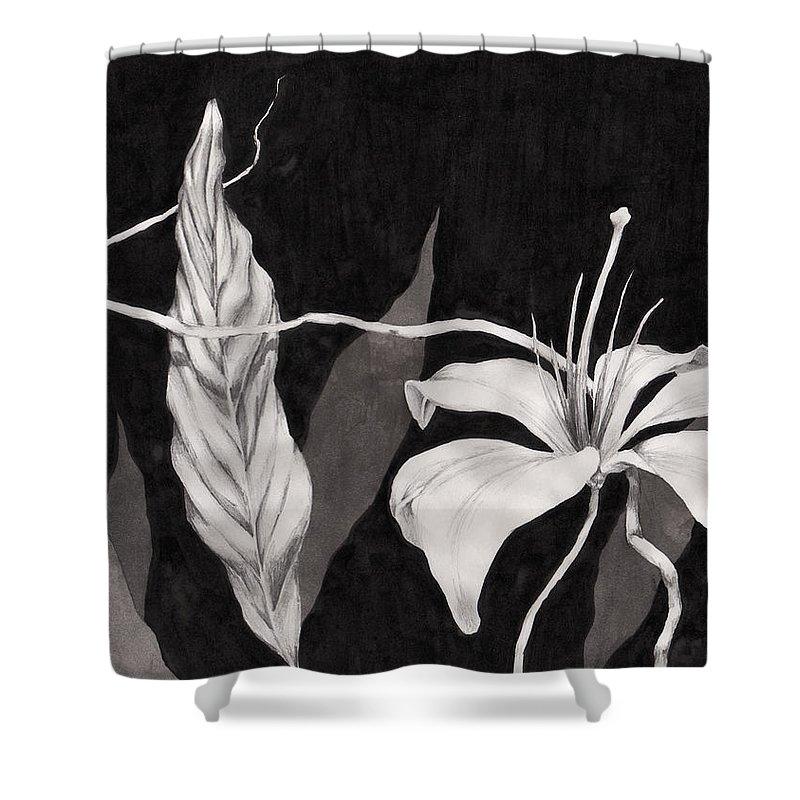 Ink Painting Shower Curtain featuring the drawing Lily In The Night by Jennifer McDuffie