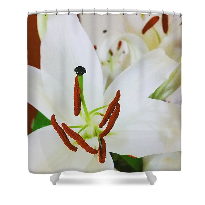 Lily Shower Curtain featuring the photograph Lily by Khushboo N