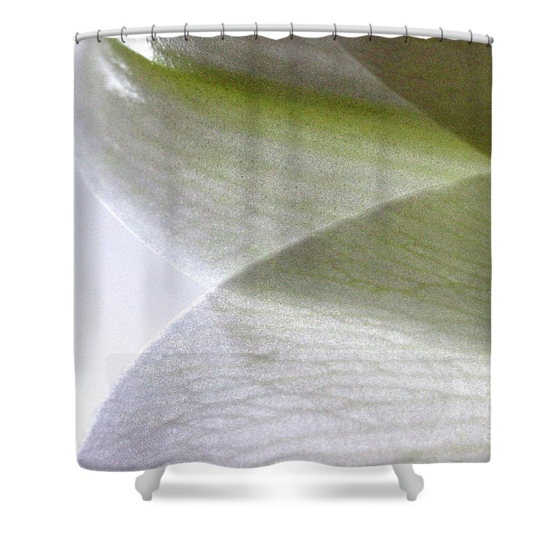 Flower Shower Curtain featuring the photograph Lily Light And Shadow by Karen Adams