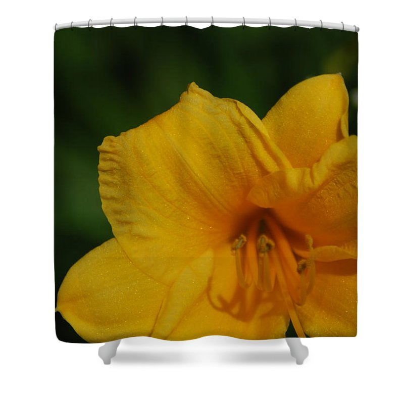 Lily Shower Curtain featuring the digital art Lily by Mery Moon