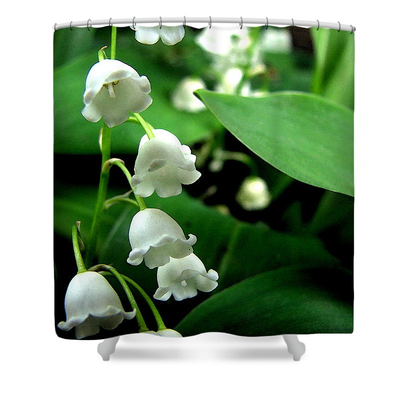 Flower Shower Curtain featuring the photograph Lily Of The Valley by Michelle Calkins