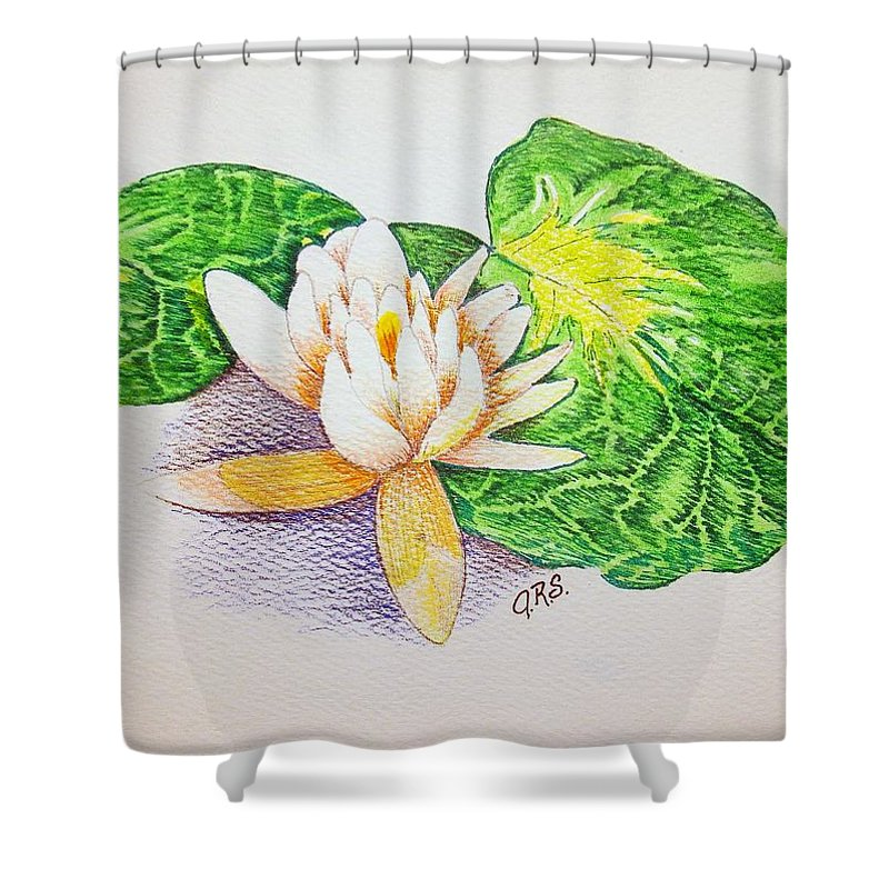 Stationery Card Shower Curtain featuring the drawing Lily Pad by J R Seymour
