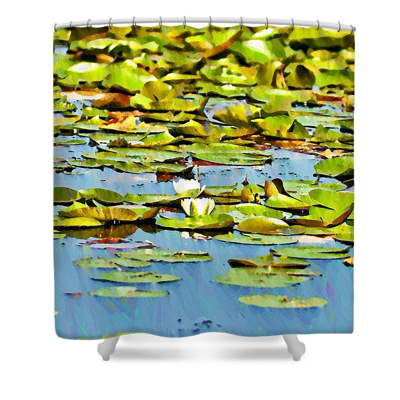 Pond Shower Curtain featuring the photograph Lily Pond by Bill Cannon