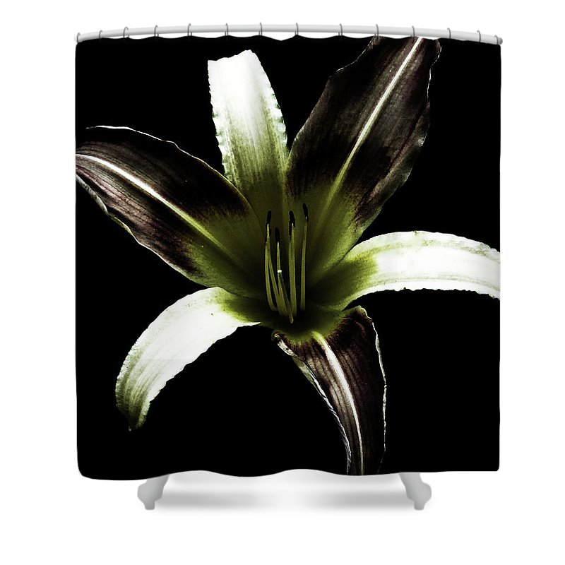 Lily Shower Curtain featuring the digital art Lily by Tania Maria Nascimento
