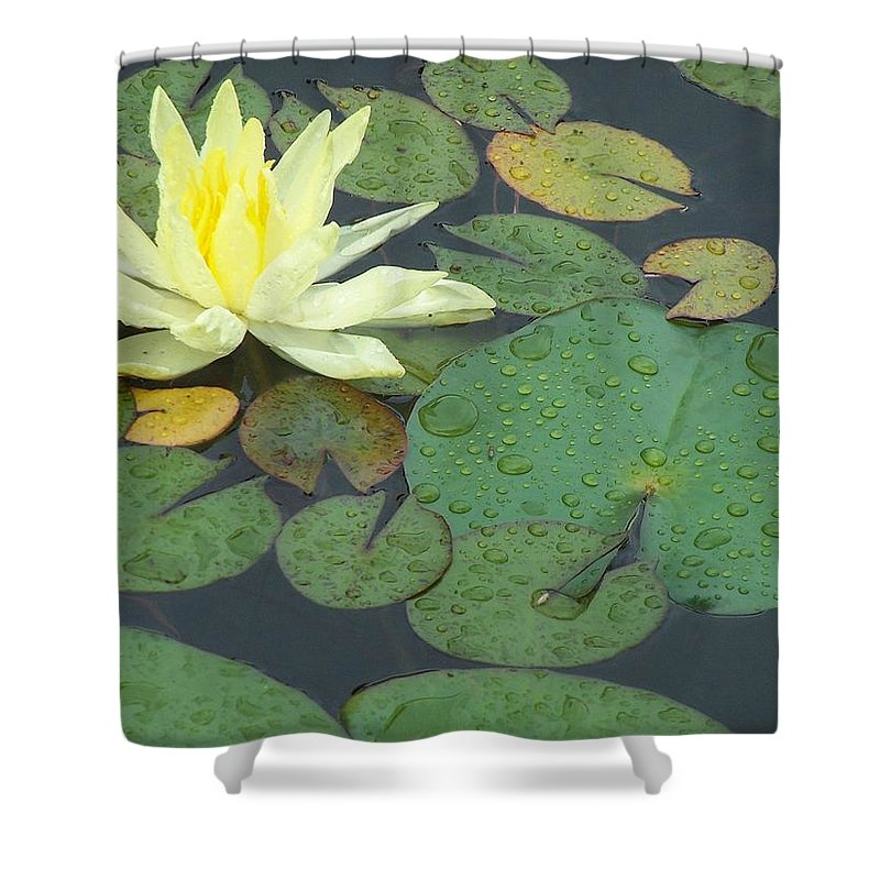 Lilypad Shower Curtain featuring the photograph Lilypad by Joan Gal-Peck