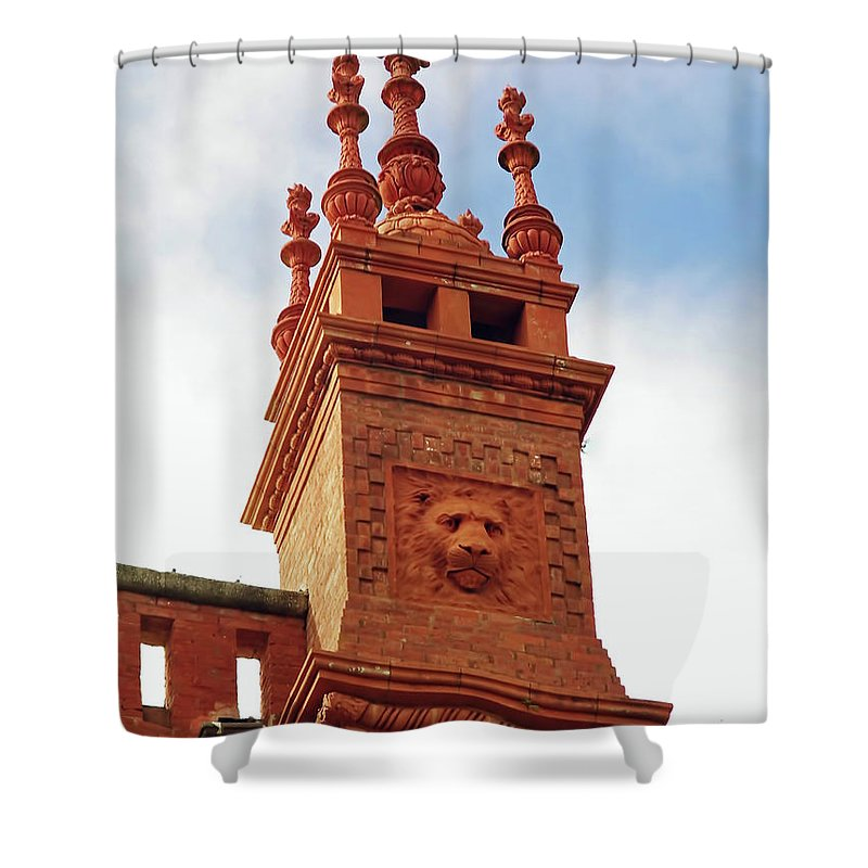 Lightner Shower Curtain featuring the photograph Lion In The Details by D Hackett