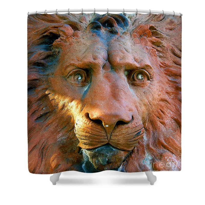 Saint Augustine Florida Shower Curtain featuring the photograph Lion Of Saint Augustine by David Lee Thompson