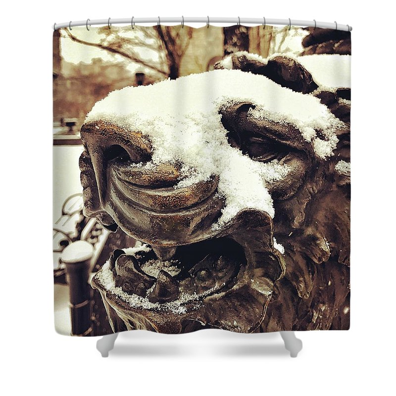 Snow Shower Curtain featuring the photograph Lion by Robert Villano