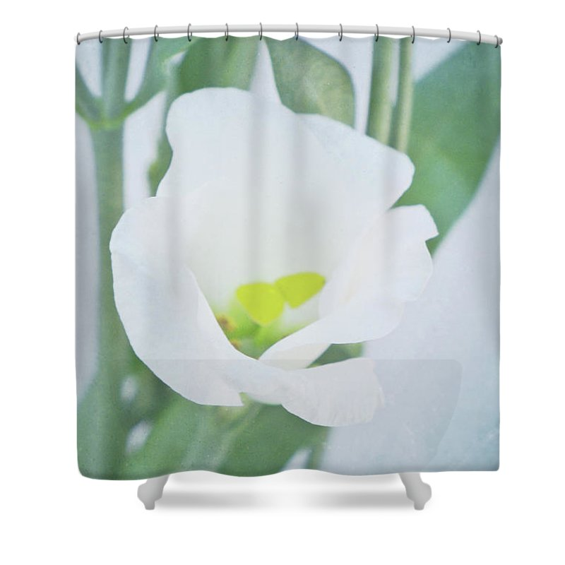 Lisianthus Shower Curtain featuring the photograph Lisianthus by Angela Doelling AD DESIGN Photo and PhotoArt