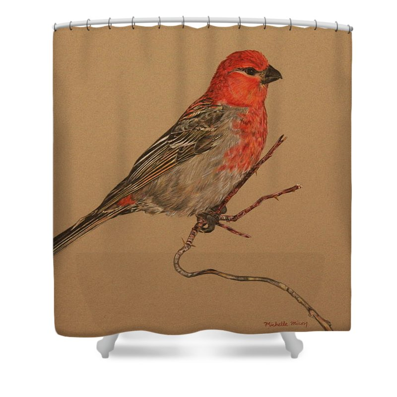 Bird Shower Curtain featuring the drawing Little Bird by Michelle Miron-Rebbe