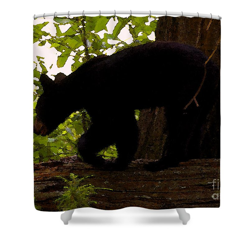 Black Bear Shower Curtain featuring the painting Little Black Bear by David Lee Thompson