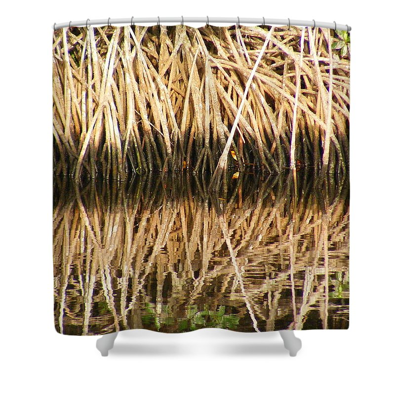 Plants Shower Curtain featuring the photograph Little Feet by Ed Smith