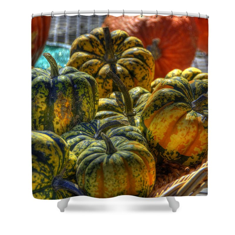 Farmlife Shower Curtain featuring the photograph Little Gourds by Sam Davis Johnson