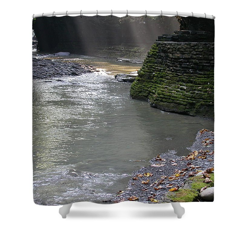 Watkins Glen Shower Curtain featuring the photograph Little Ray Of Sunshine by Linda Murphy