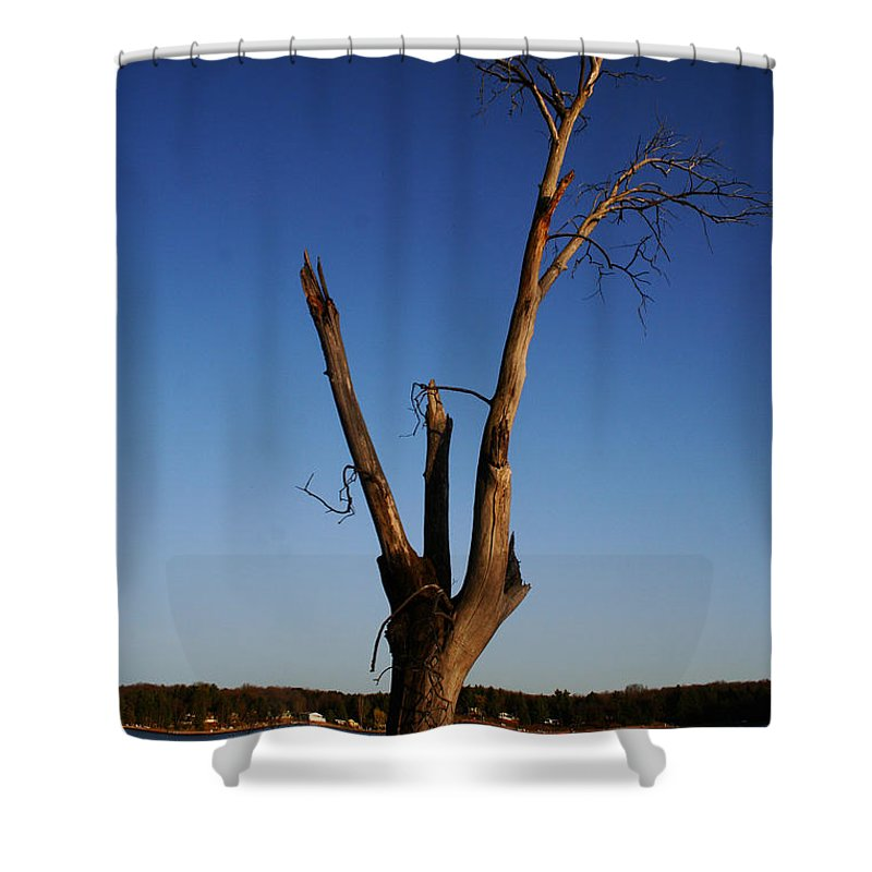 Shower Curtain featuring the photograph Living On by Jamie Lynn