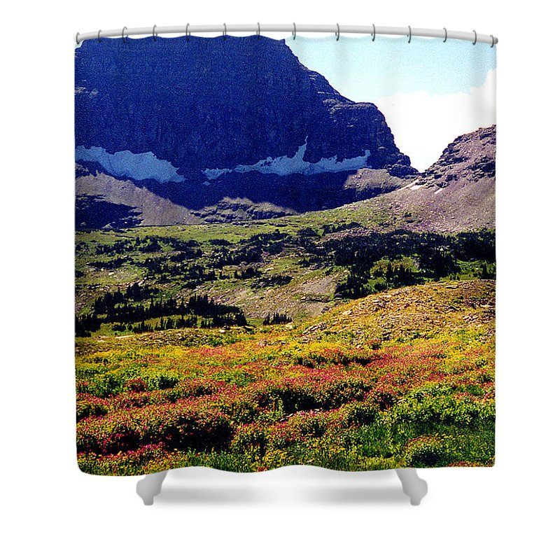 Glacier National Park Shower Curtain featuring the photograph Logans Pass In Glacier National Park by Nancy Mueller