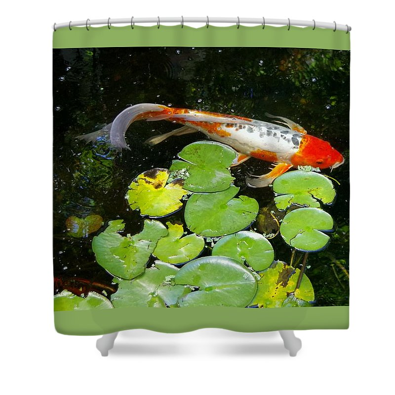 Koi Shower Curtain featuring the photograph Loi With Lily Pads C by Phyllis Spoor