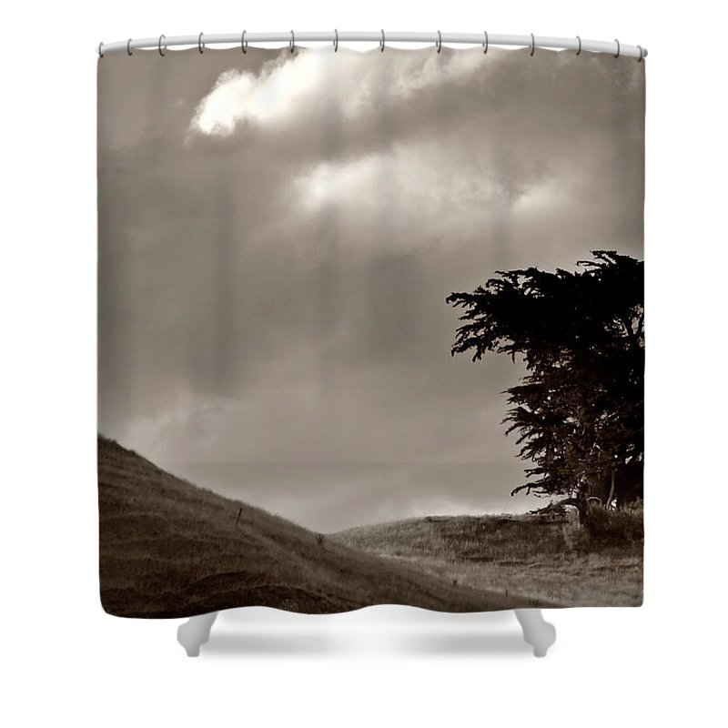 Black And White Shower Curtain featuring the digital art Lone Tree On A New Zealand Hillside by Mark Duffy