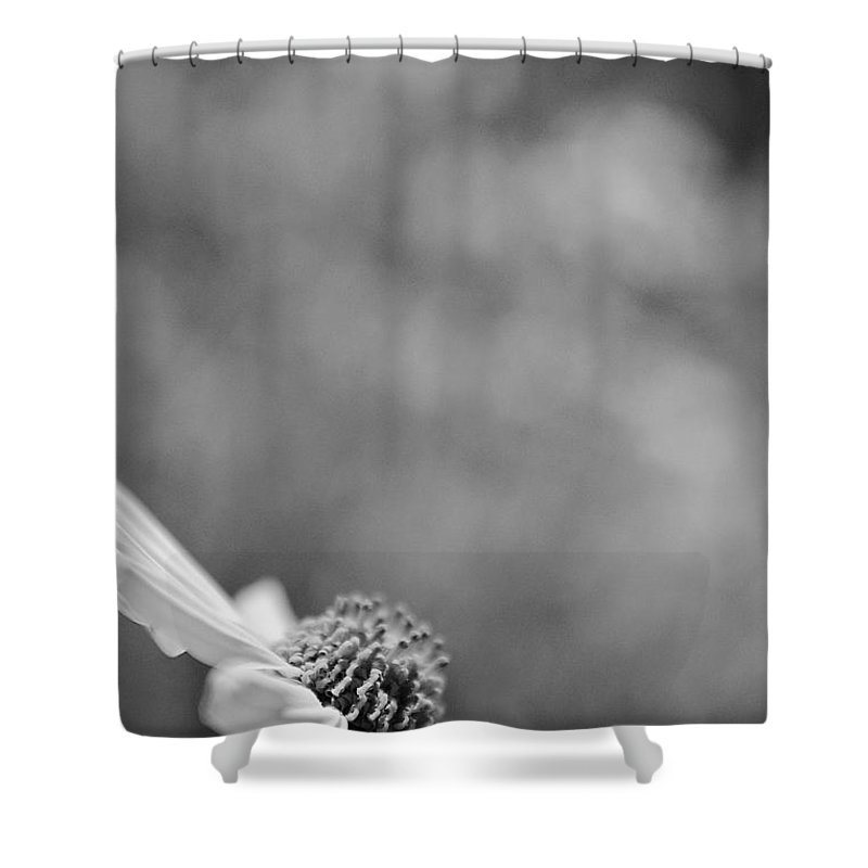 Black And White Shower Curtain featuring the photograph Lone Wildflower Black And White by Jill Reger