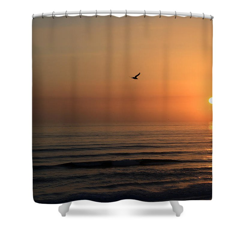 Bird Fly Flight Gull Alone Sun Sunrise Sky Ocean Wave Reflection Nature Golden Gold Shower Curtain featuring the photograph Lonely Flight by Andrei Shliakhau