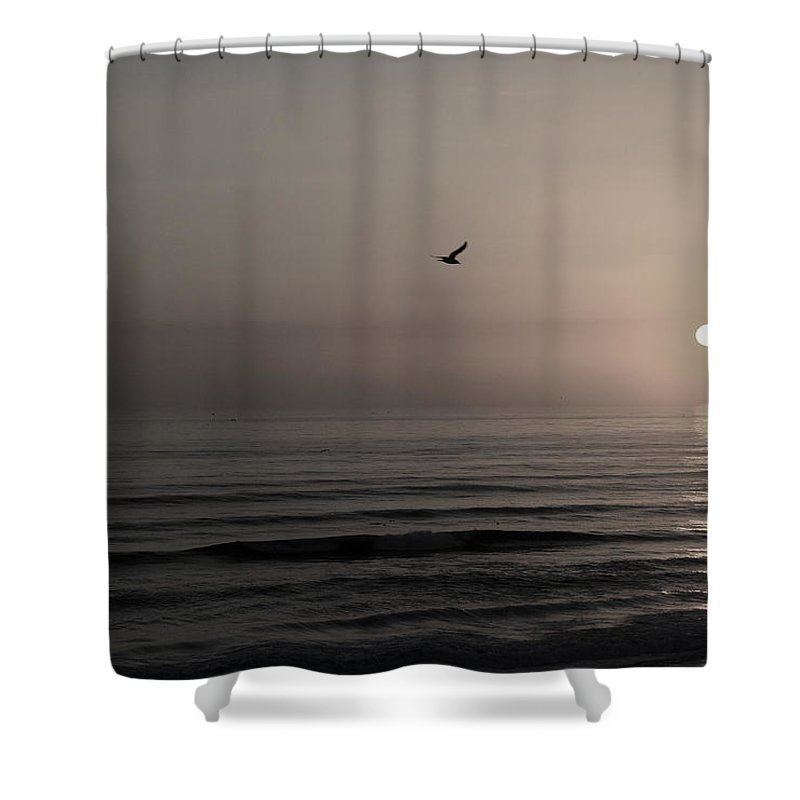 Beach Ocean Wave Sunrise Sunset Sun Bird Gull Fly Flight Water Vacation Peace Nature Relax Peace Shower Curtain featuring the photograph Lonely Flight II by Andrei Shliakhau