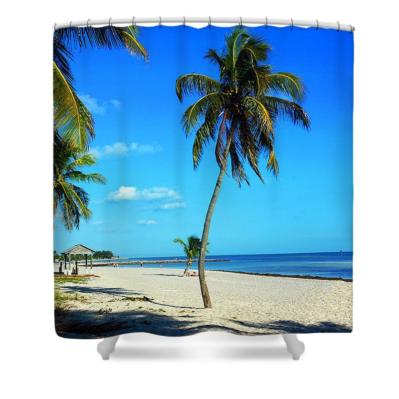 Palm Tree Shower Curtain featuring the photograph Lonely Palm by Susanne Van Hulst