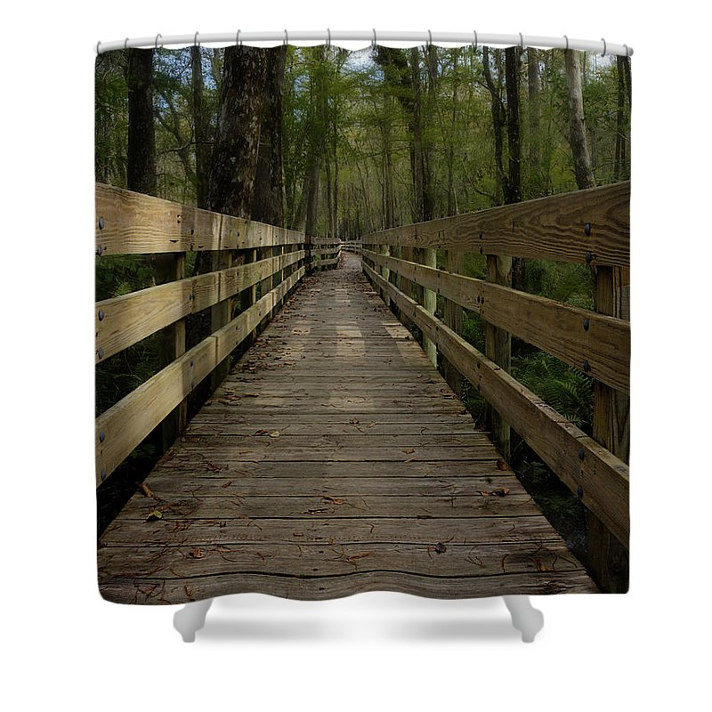 Boardwalk Shower Curtain featuring the photograph Long Boardwalk Through The Wetlands by Mitch Spence
