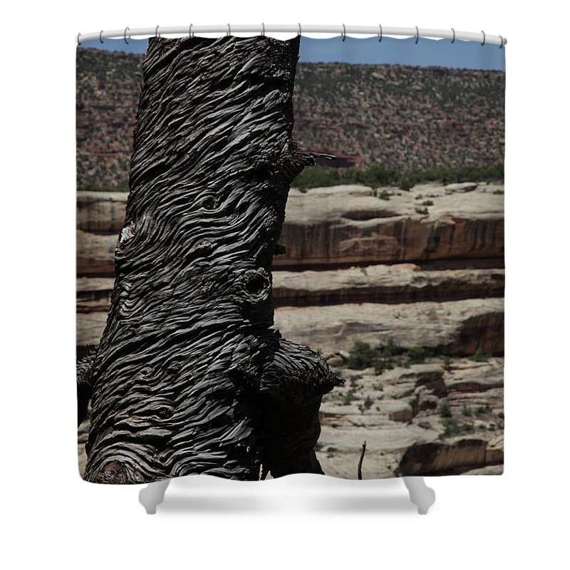 Tree Wood Nature Shower Curtain featuring the photograph Lonley Tree by Daniel Klein