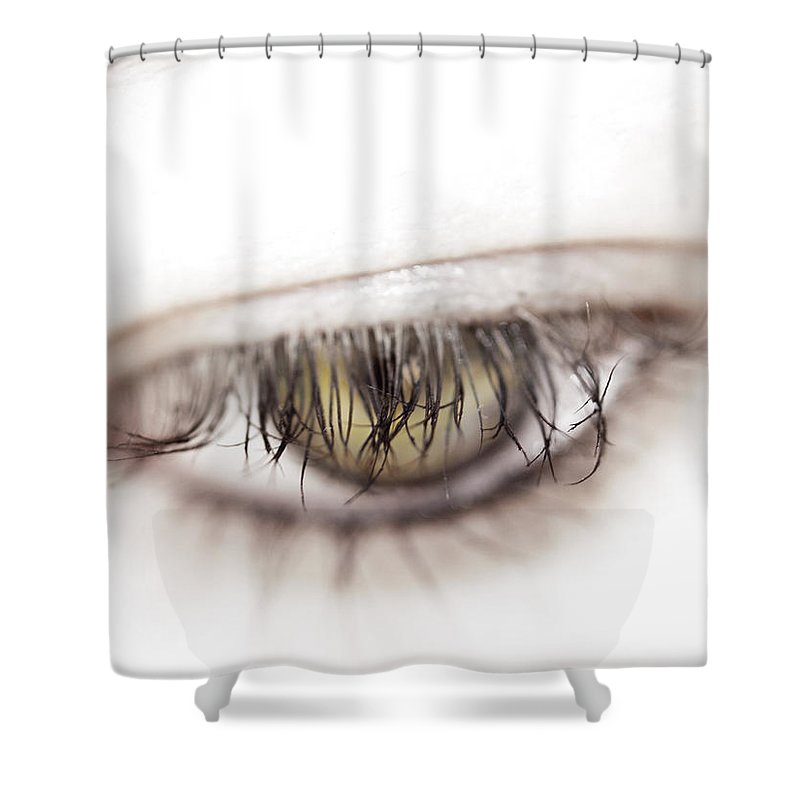 Eye Shower Curtain featuring the photograph Look Away by Kelly Jade King