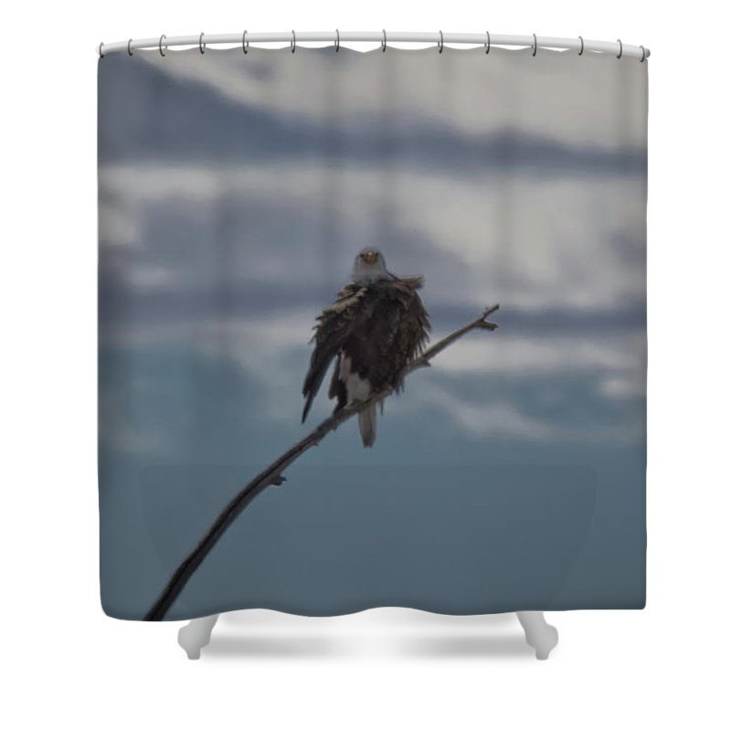 Usa Shower Curtain featuring the photograph Looking Ahead by Mitch Johanson