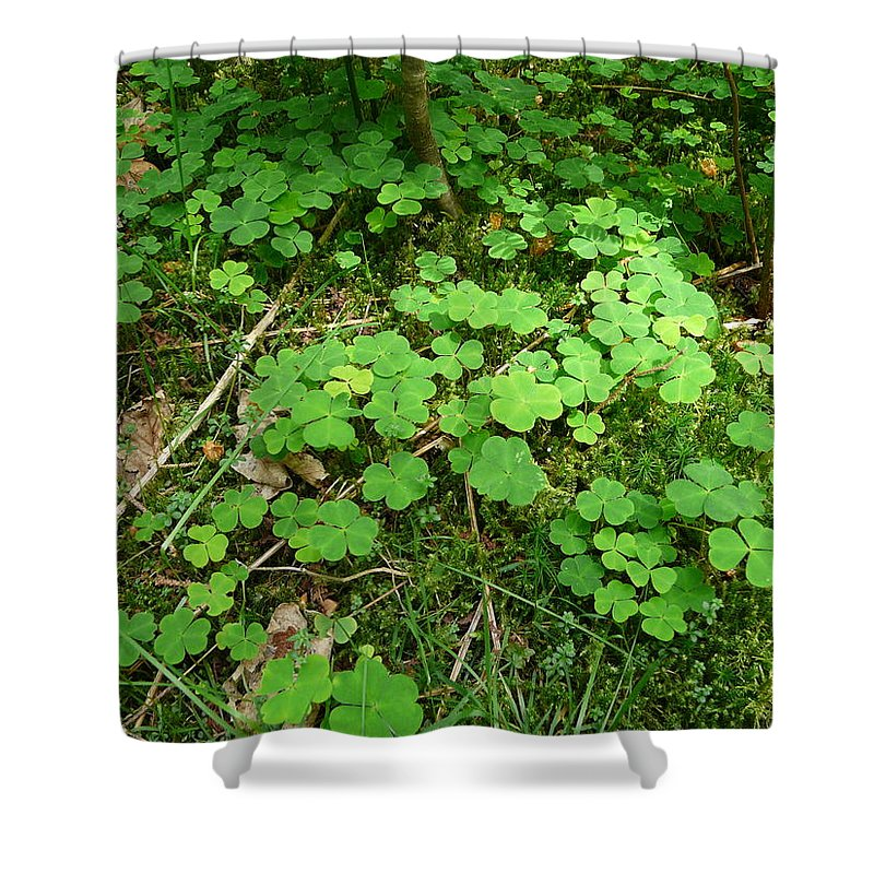 Clover Shower Curtain featuring the photograph Looking For A Four-leaf Clover by Valerie Ornstein