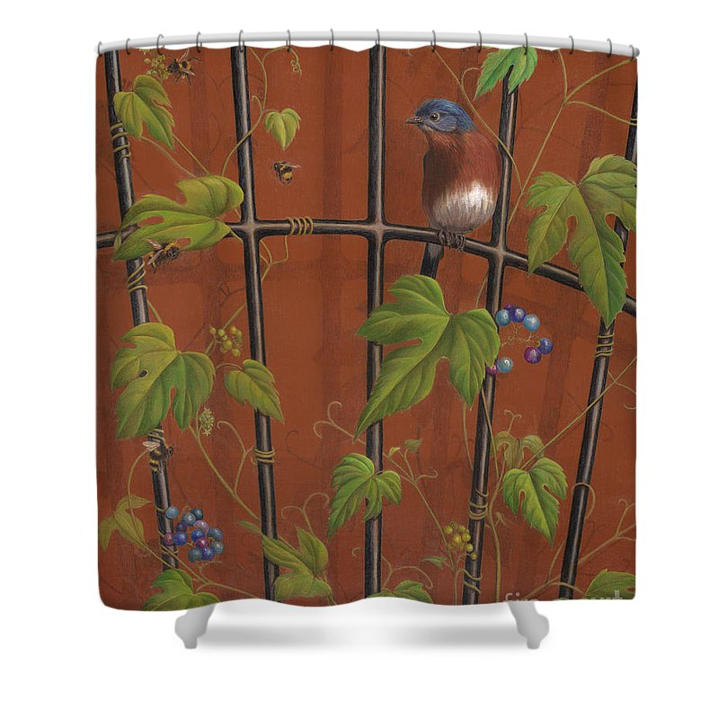 Bluebird Shower Curtain featuring the painting looking for Lunch by Diane Harm