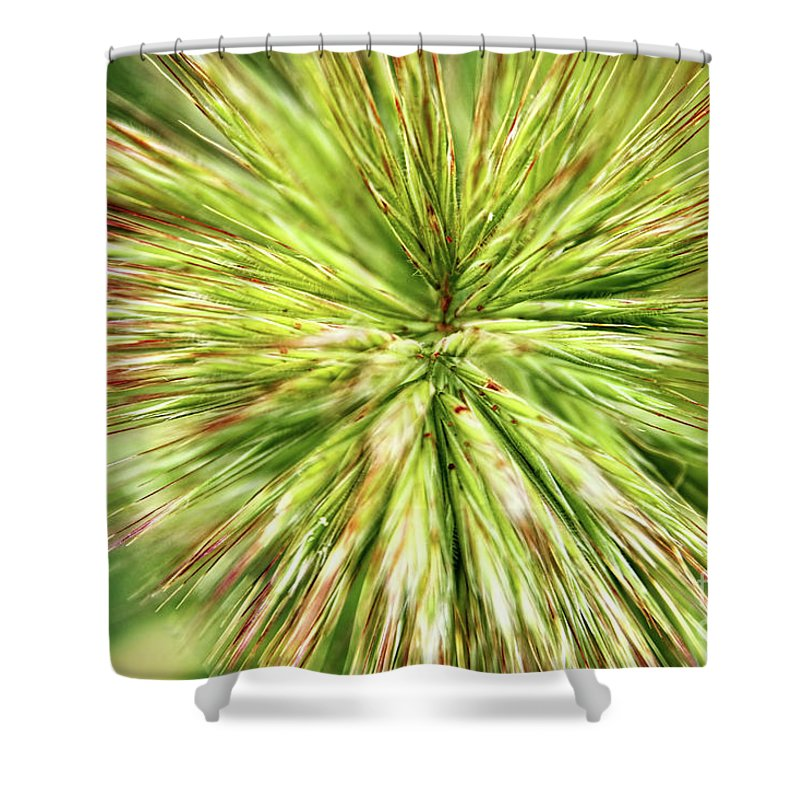 Grass Shower Curtain featuring the photograph Looking Into The Unknown by Mariola Bitner