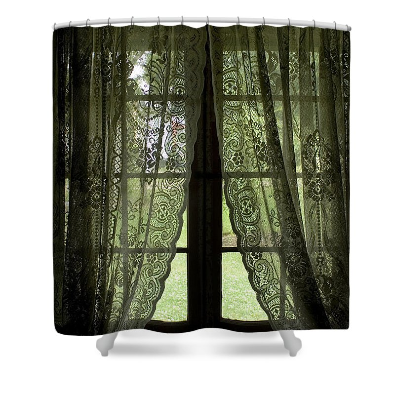 Windows Shower Curtain featuring the photograph Looking Out The Window Of A Log Cabin by Todd Gipstein