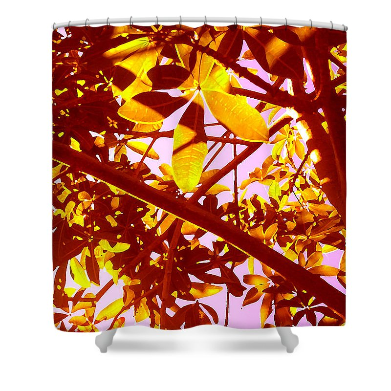 Garden Shower Curtain featuring the painting Looking Through Tree Leaves 2 by Amy Vangsgard
