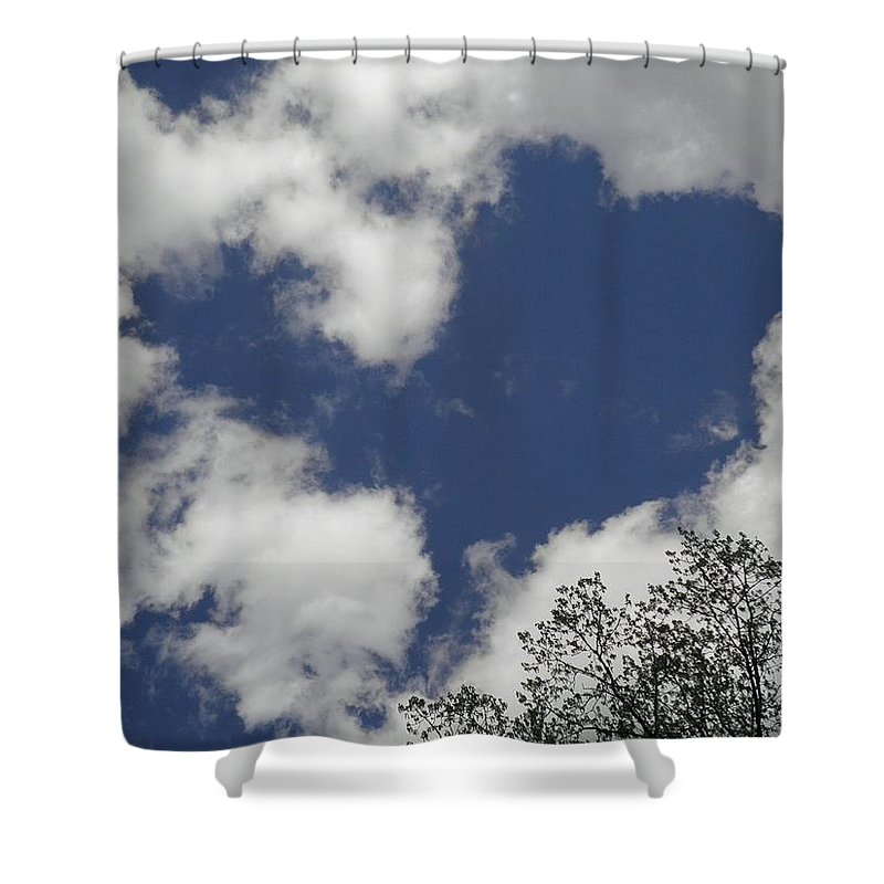Sky Shower Curtain featuring the photograph Love From Above by T Cook