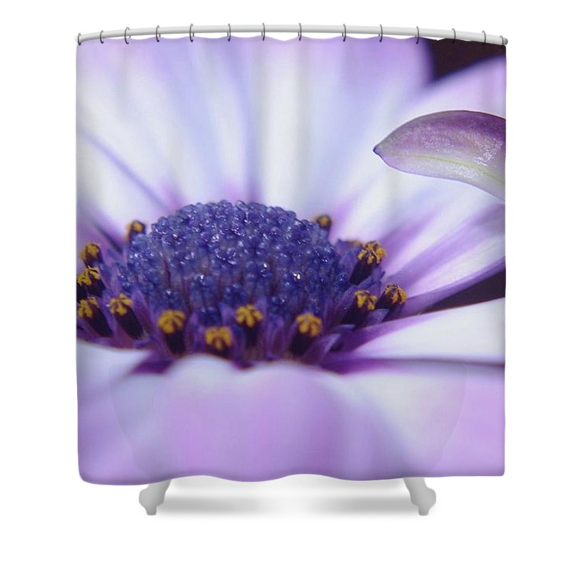 Flowers. Petals. Blossoms. Blowers In Bloom Shower Curtain featuring the photograph Love Is A Flare In Your Petal by Jeff Swan