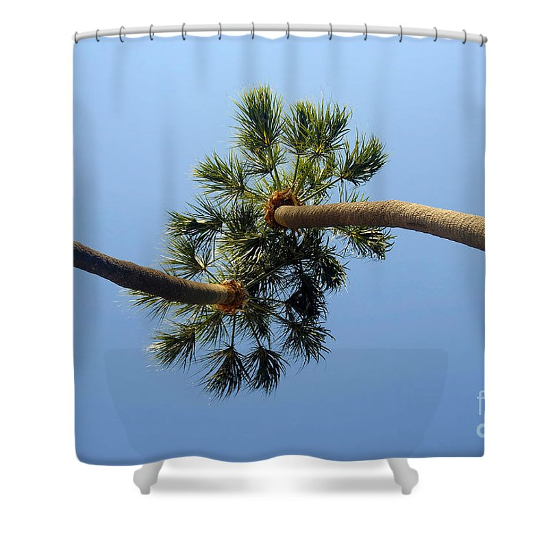 Love Shower Curtain featuring the photograph Lovers by David Lee Thompson