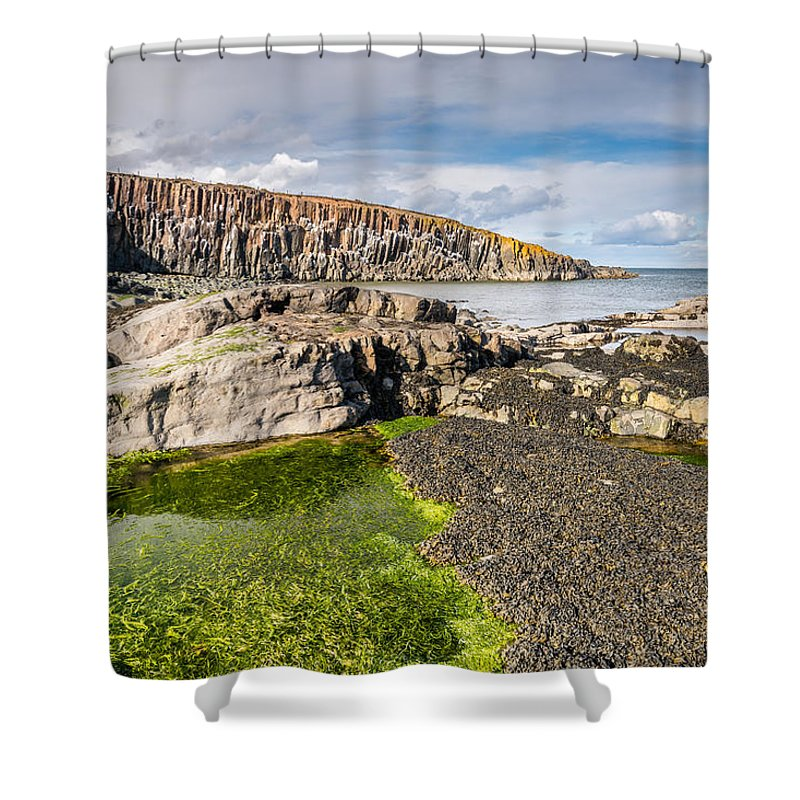Northumberland Shower Curtain featuring the photograph Low Tide At Cullernose Point by David Head