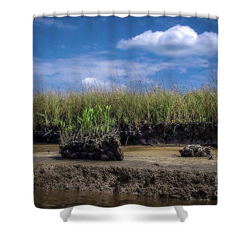 River Shower Curtain featuring the photograph Low Tide Iv by Yvette Wilson
