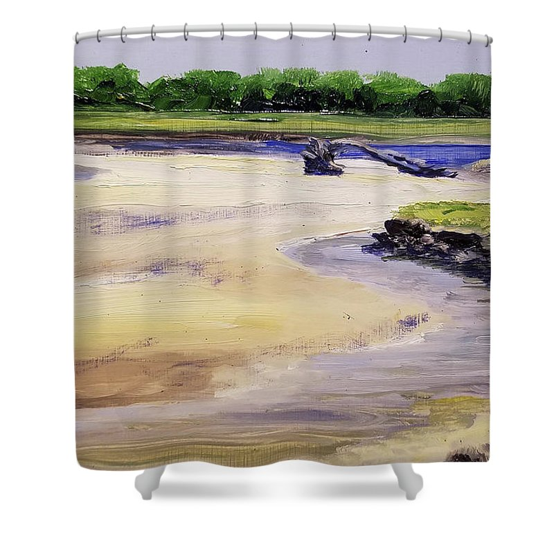 Parsons Beach Shower Curtain featuring the painting Low Tide Parsons by Susan Hanna