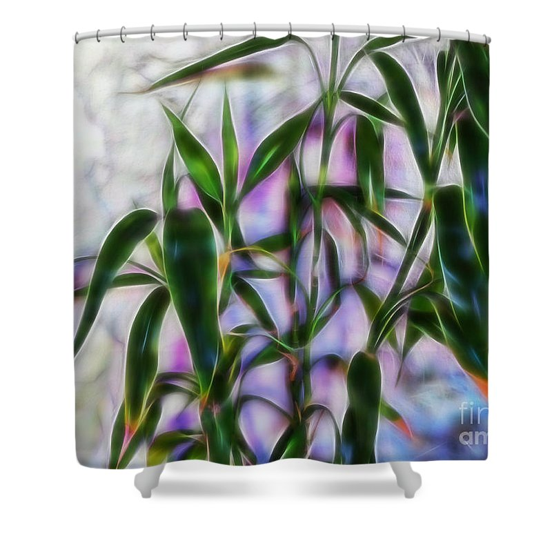 Bamboo Shower Curtain featuring the photograph Lucky Bamboo by Tracey Everington